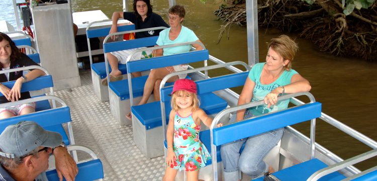 daintree river tours
